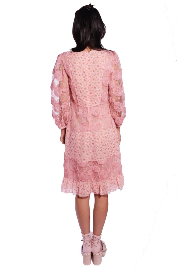 Embroidered Tulle Dress 2