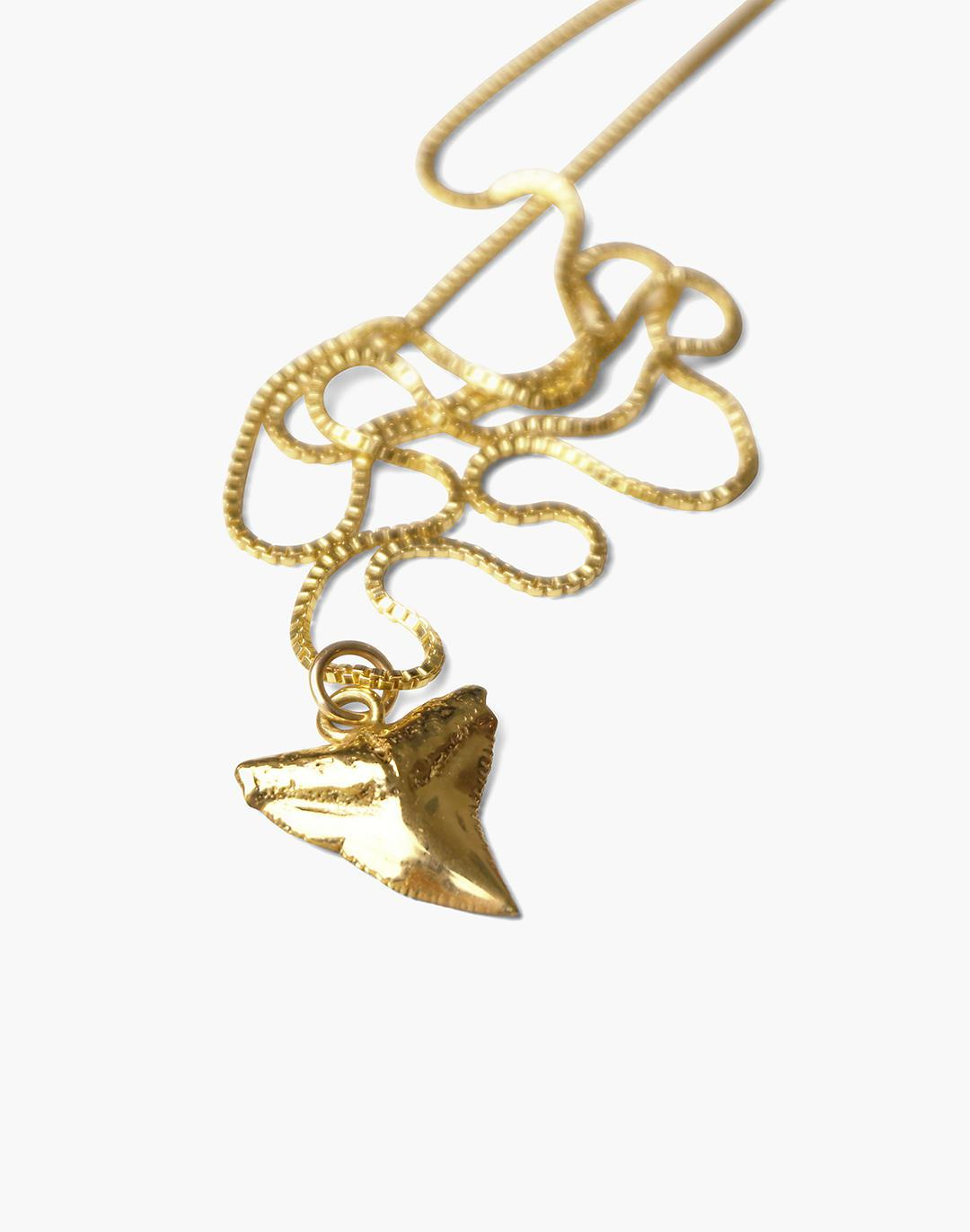 Charlotte Cauwe Studio Shark Tooth Necklace in Gold