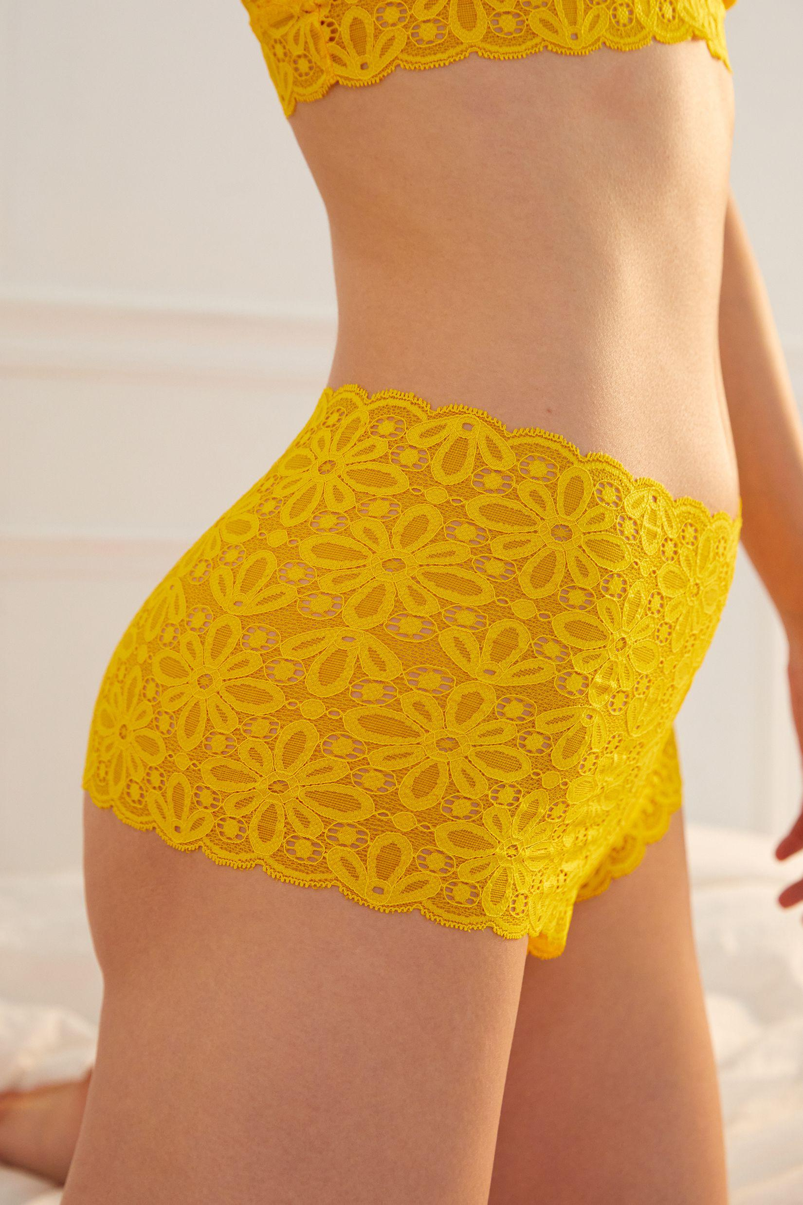 Lace High-Waisted Briefs 1