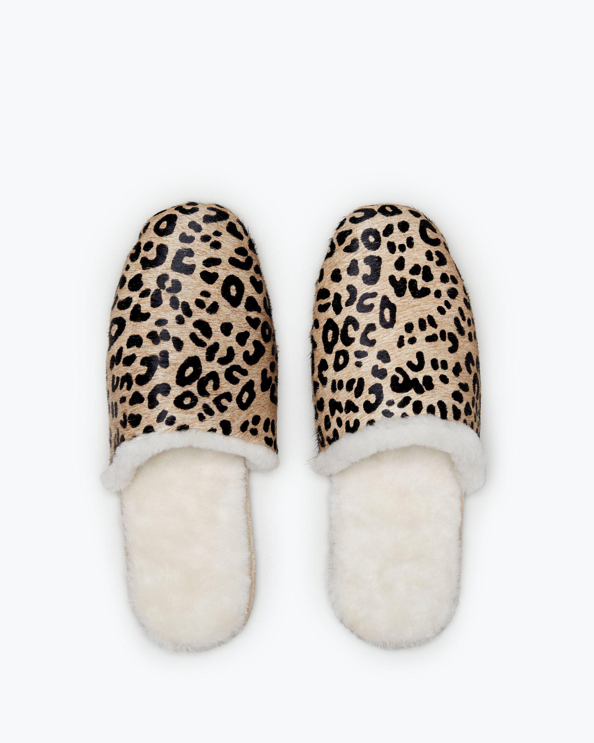 James Slippers