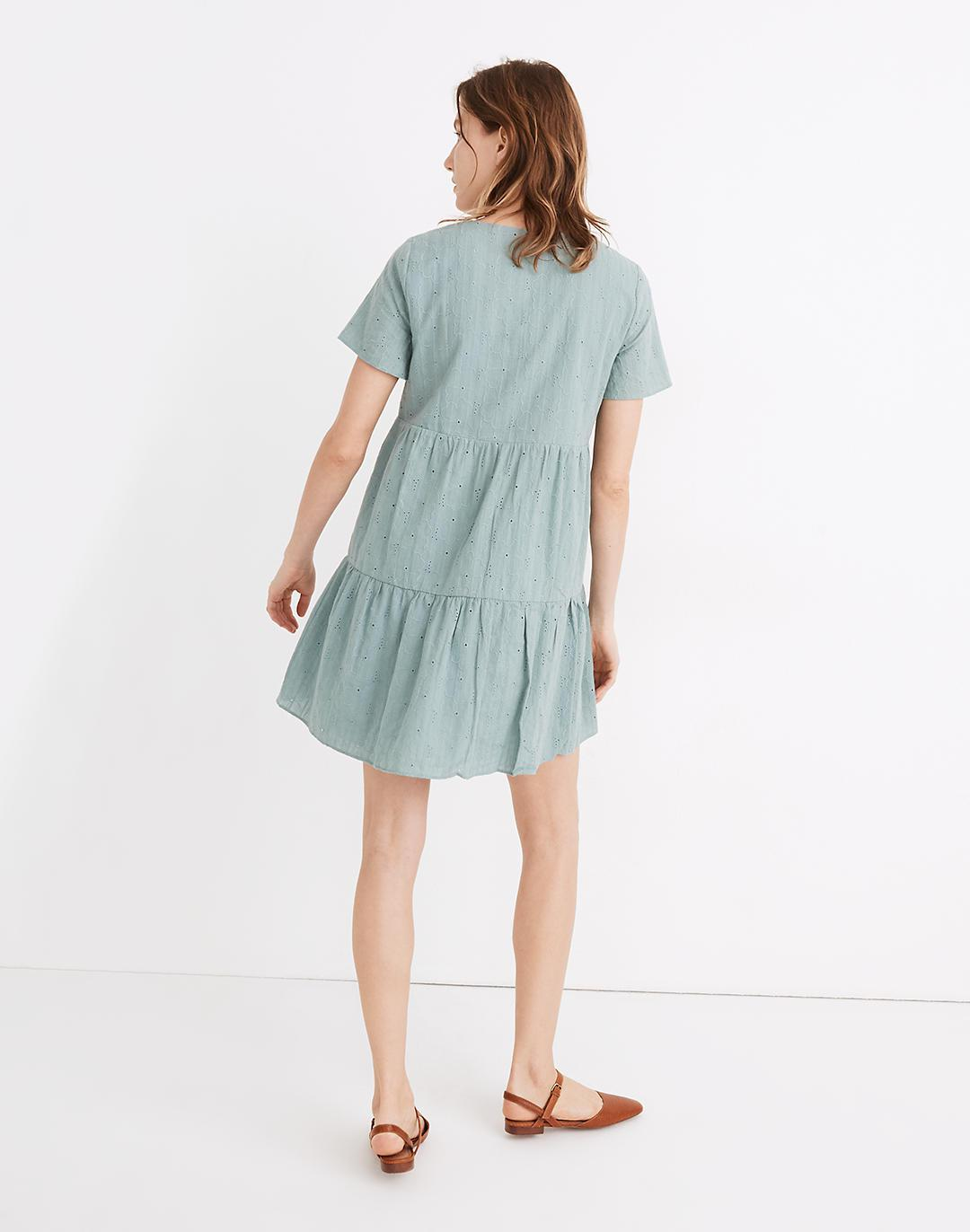 Petite Embroidered Eyelet Button-Front Tiered Mini Dress 2