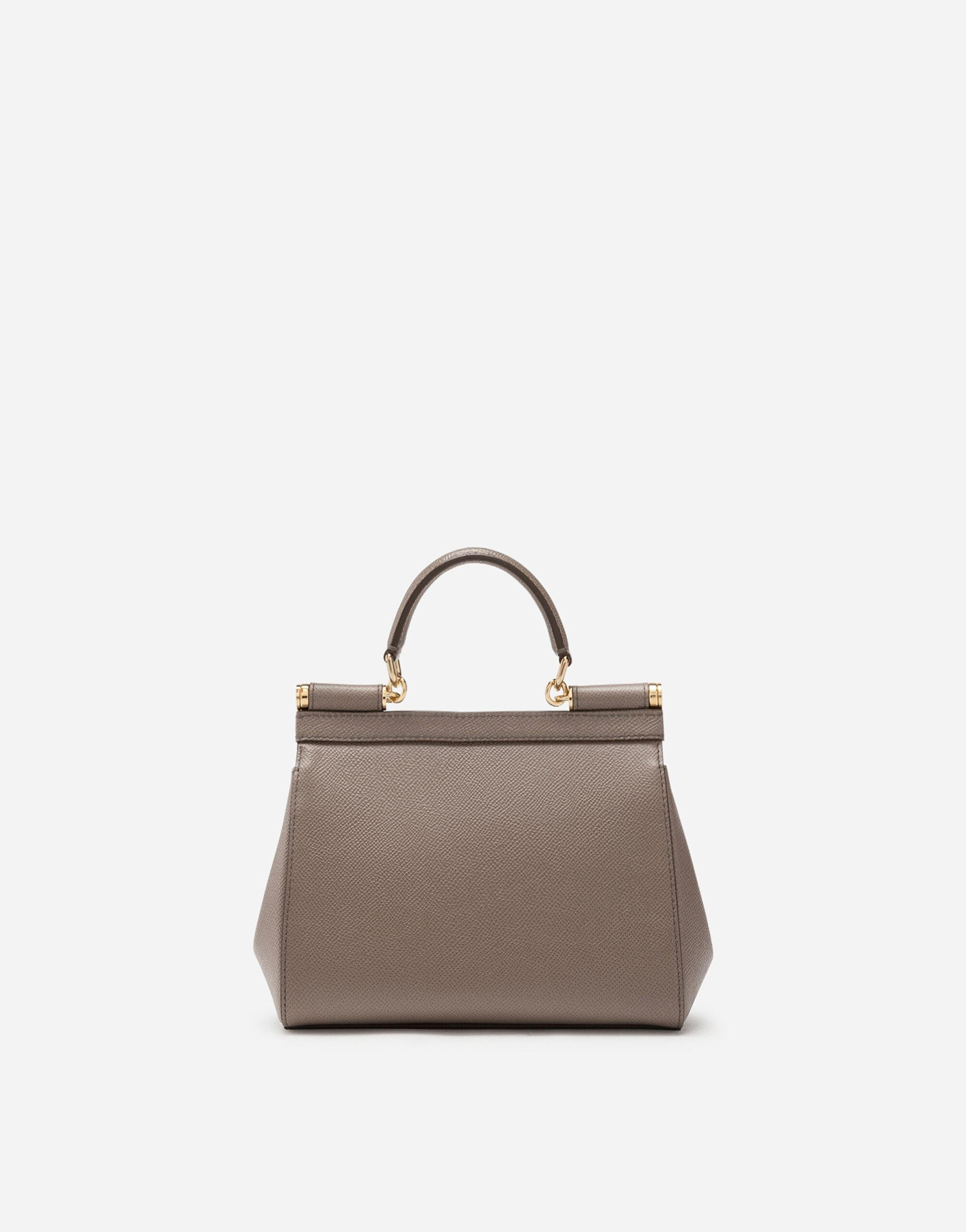Small dauphine leather Sicily bag 2