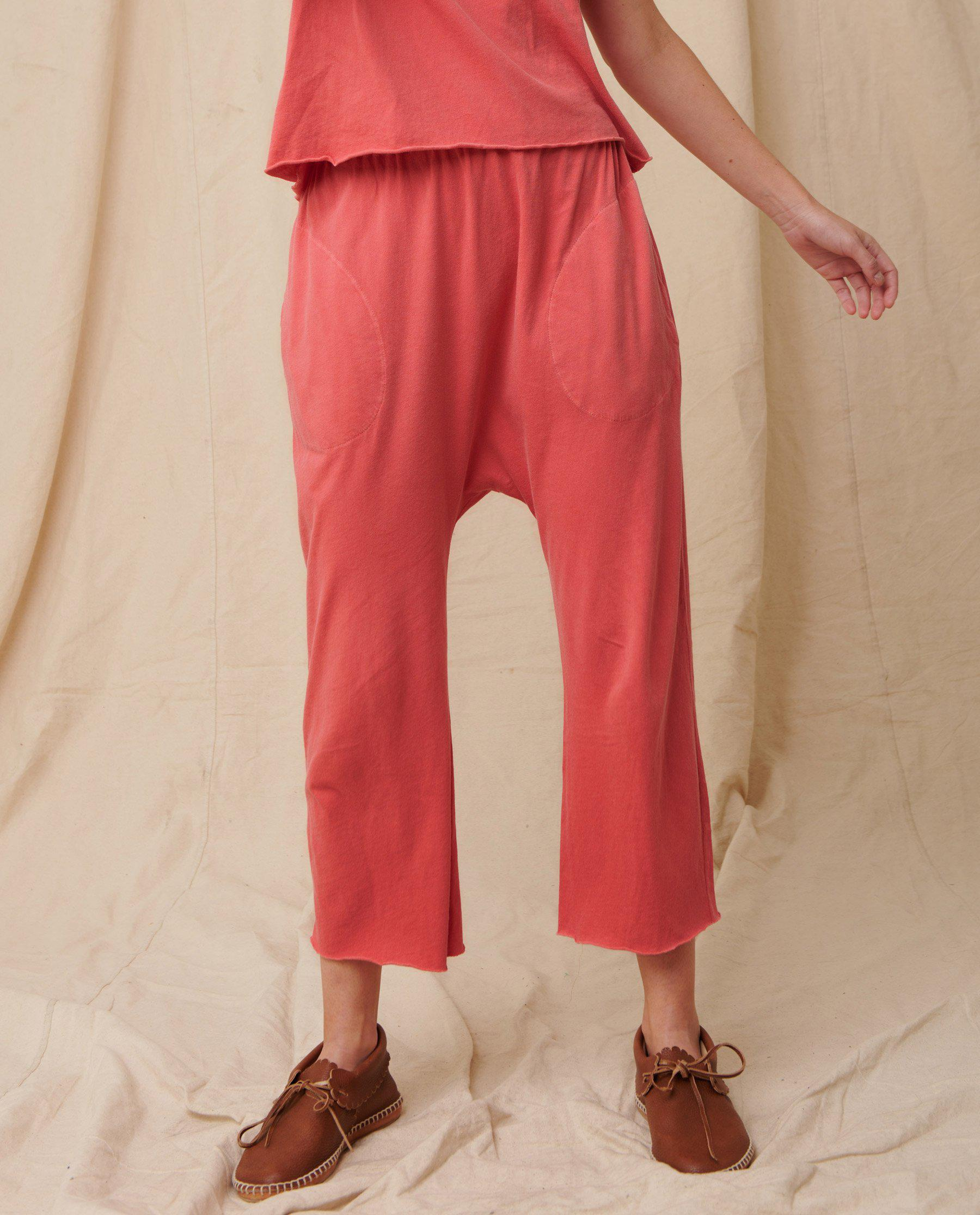 The Jersey Crop. -- Coral 1