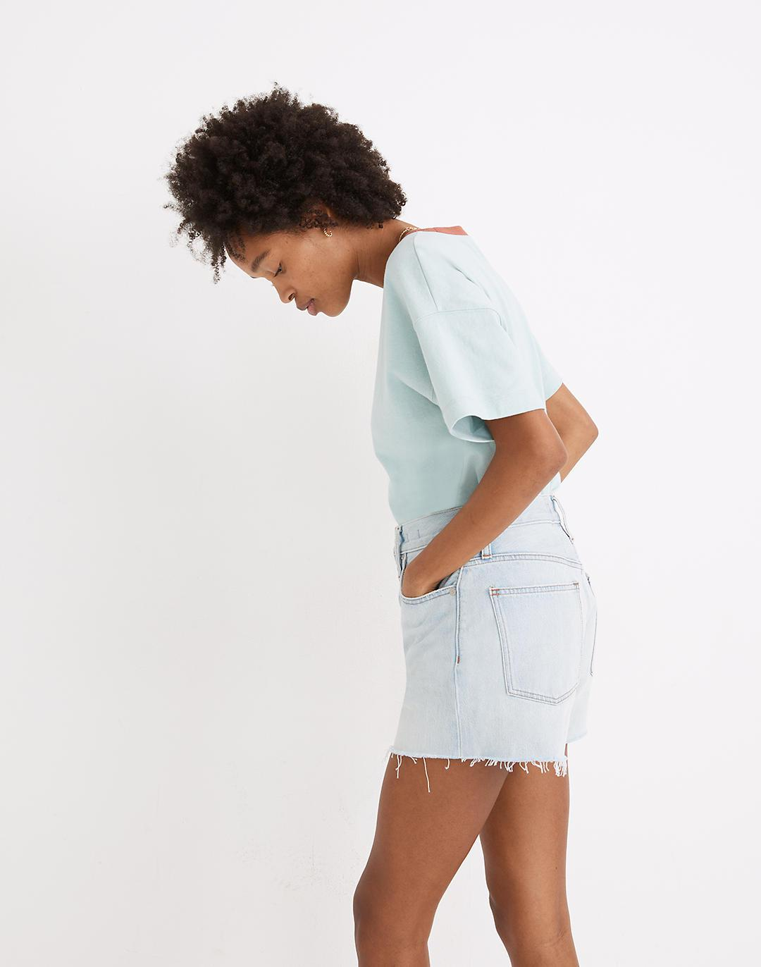 The Momjean Short in Fitzgerald Wash 1