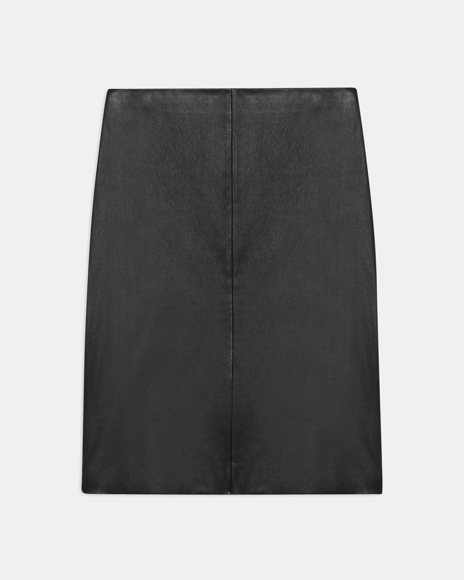 Pencil Skirt in Leather Combo 5