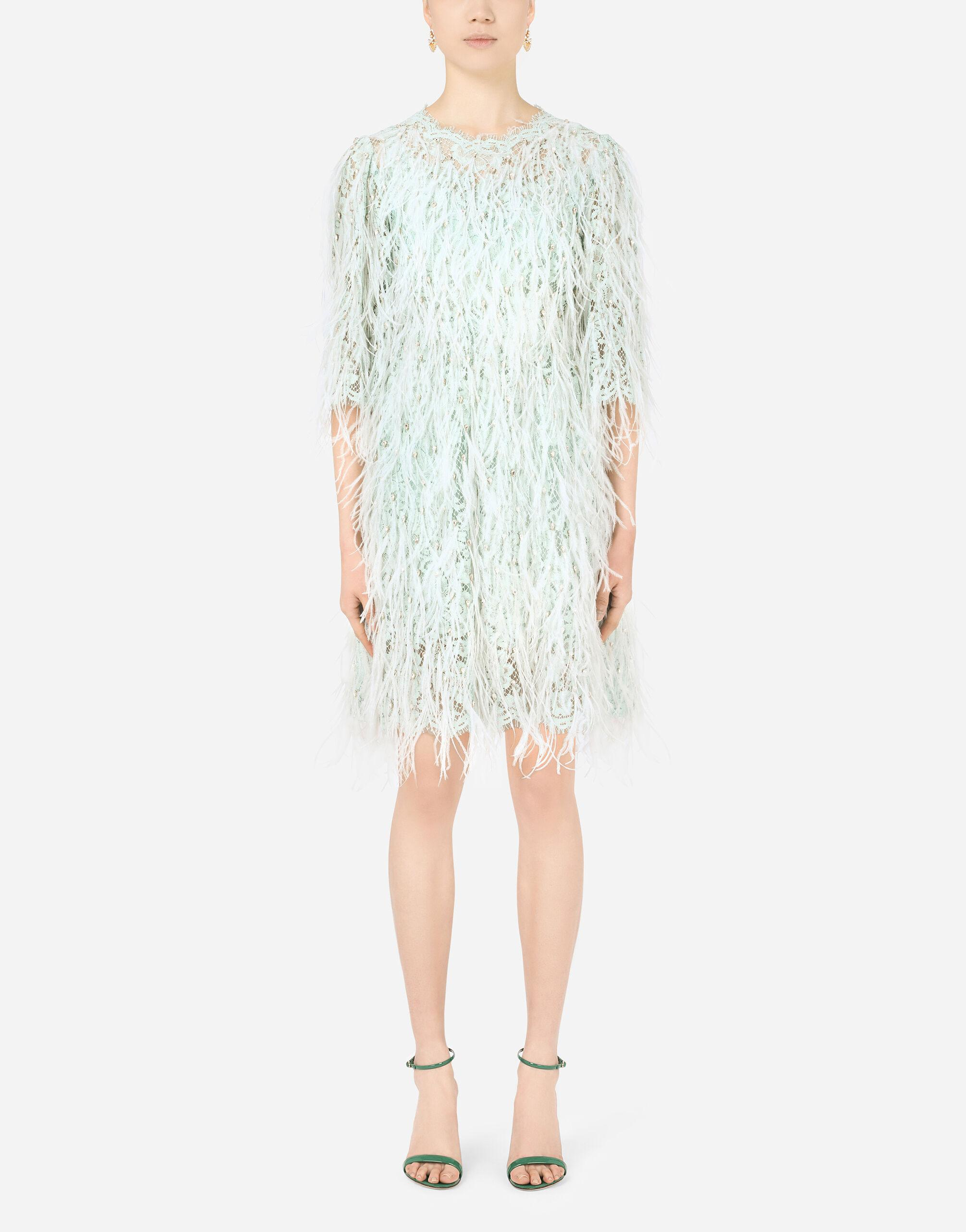 Short lace dress with marabou trim and rhinestones