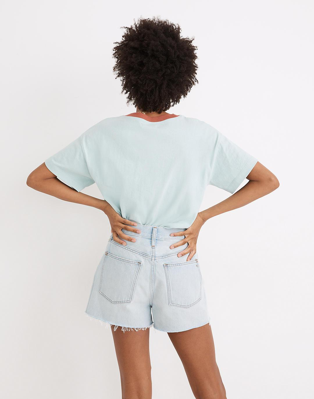 The Momjean Short in Fitzgerald Wash 2