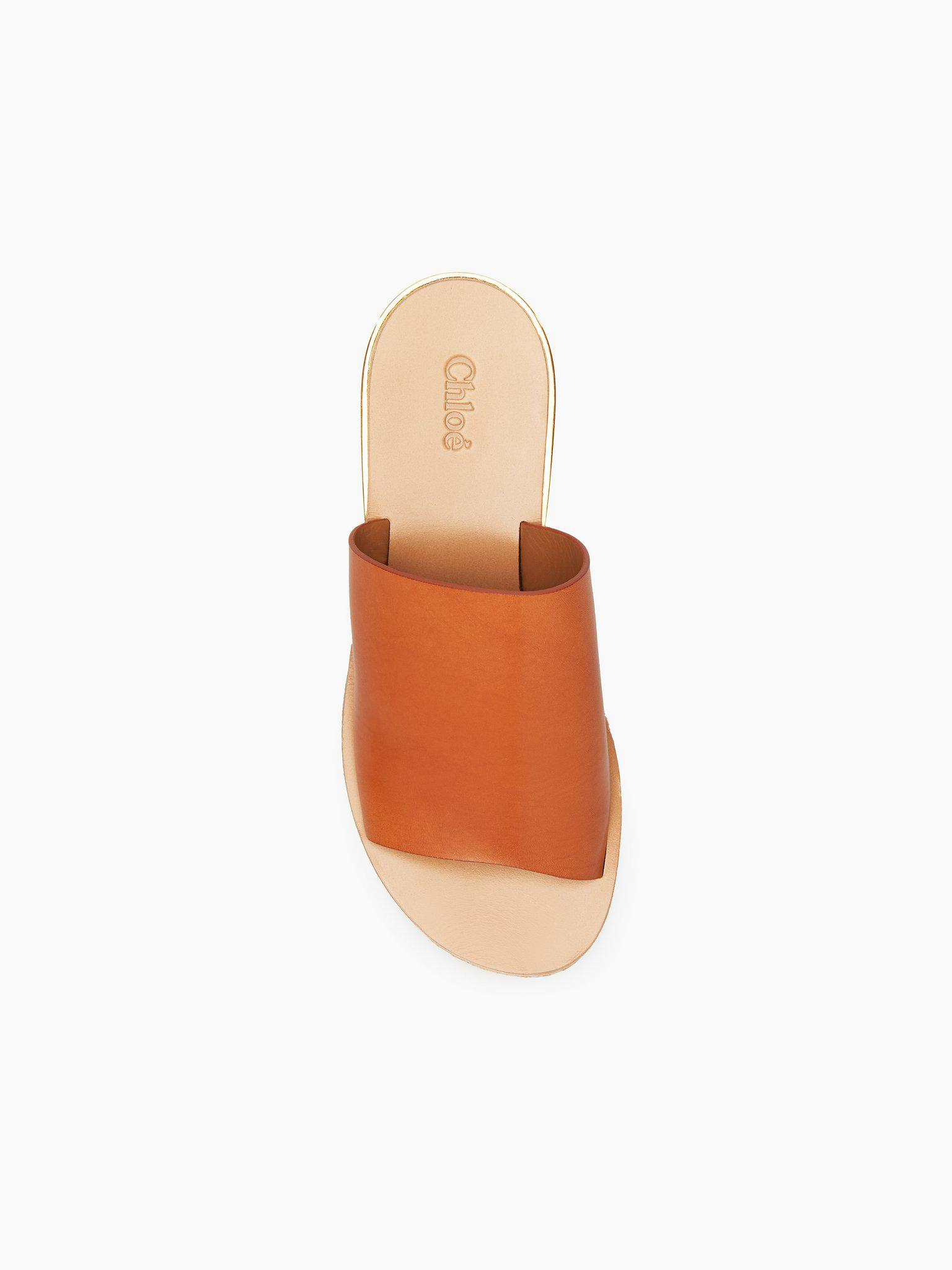 Chloé Camille Leather Mules - Lyst